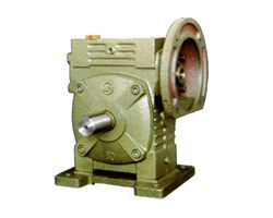Single-stage standard FCDS worm gear reducer