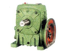 WPDS worm gear reducer