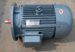 YVPG series three-phase asynchronous motor for variable frequency speed control roller