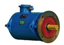 YZLPWT/YZPSL series water-cooled high temperature motor